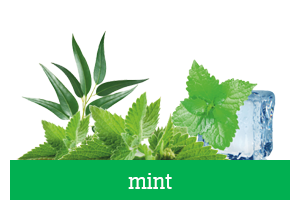 mint e-liquid flavorings